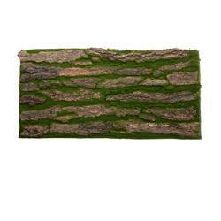 Kora drzewa - mata 50x100 cm (TR023)