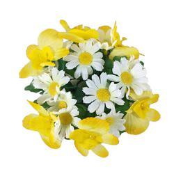 Orchidea/rumianek - stroik na świecę (YS049)