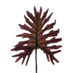 Egzotyczny liść gumowy (L318)