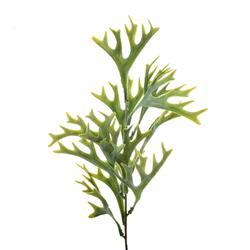 Gałązka ozdobna - rogi łosia (L083)