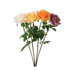 Róża - gałązka (K216)