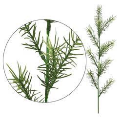 Asparagus - gałązka dekoracyjna 52 cm (L301)