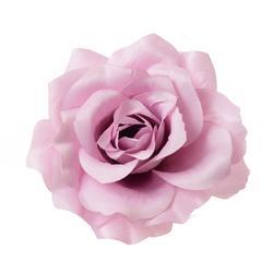 Róża - główka satyna (W079)