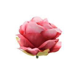 Róża - główka (W065)
