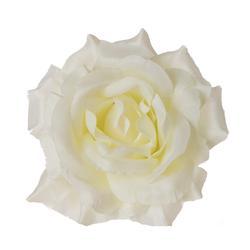 Róża - główka (W241)