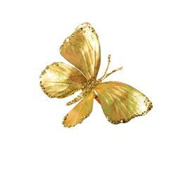 Motyl ozdobny (PM022)