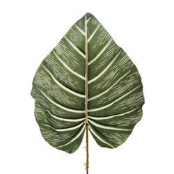 Pothos - liść (L922)