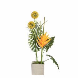 Kompzycja  z kwiatem tropikalnym (NN415)