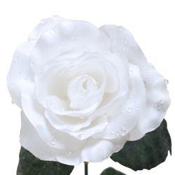 Róża z rosą - gałązka x3 (K551)