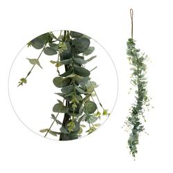 Eukaliptus - girlanda (B043)