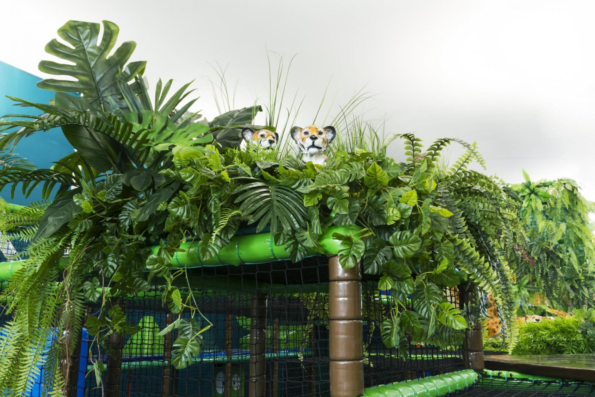 Egzotyczna aranżacja roślinna w Jungle Academy